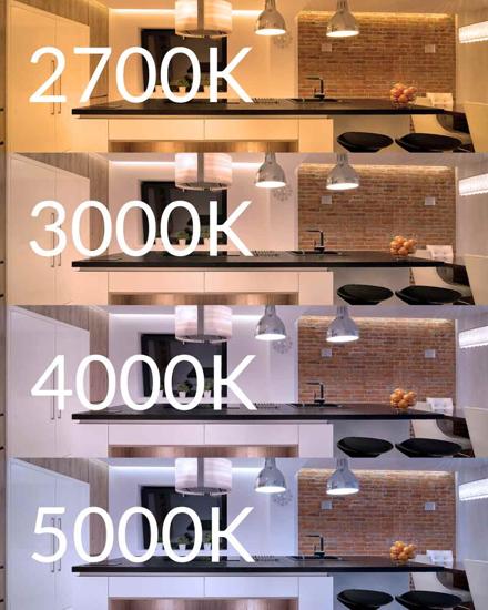 ROLLA 5MT STRIP LED 13W 4000K IP20 DA INTERNO PERCORSO LUMINOSO FLESSIBILE ADESIVO